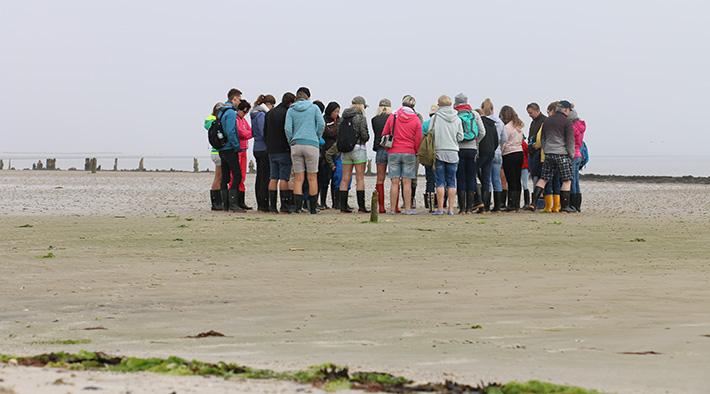 Wattwanderung im UNESCO Weltnaturerbe Wattenmeer