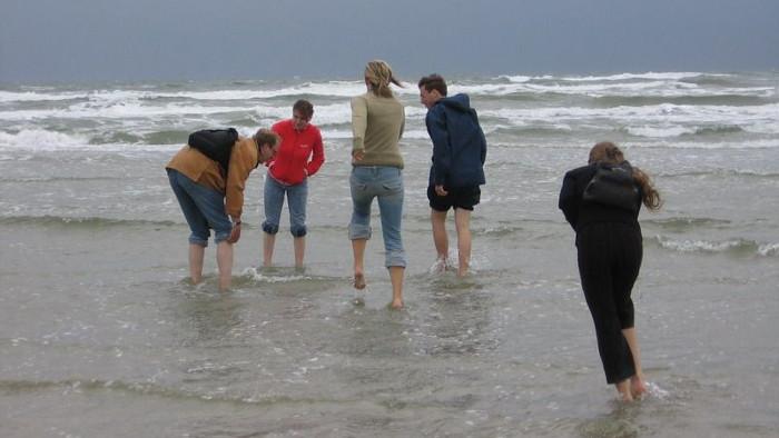 Barfuß im Meer: Nationalpark Wattenmeer erleben