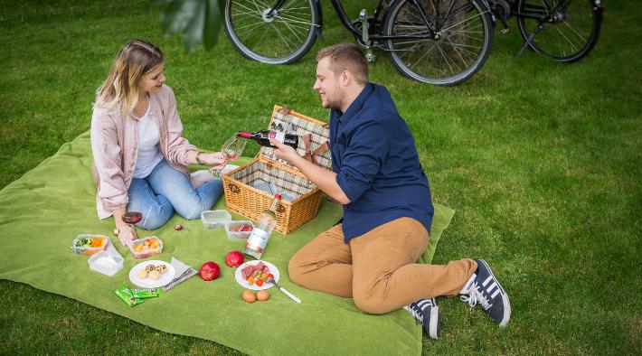 Erleben Sie Nordfriesland beim Picknick im Grünen