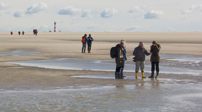Watt- und Sandbankführung