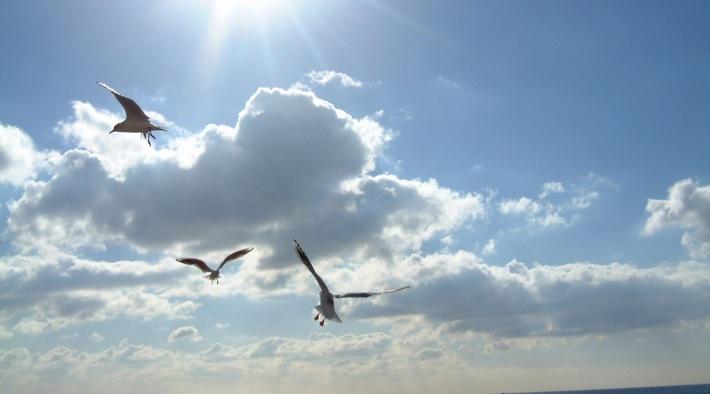 Weiter Himmel über dem Nationalpark Wattenmeer