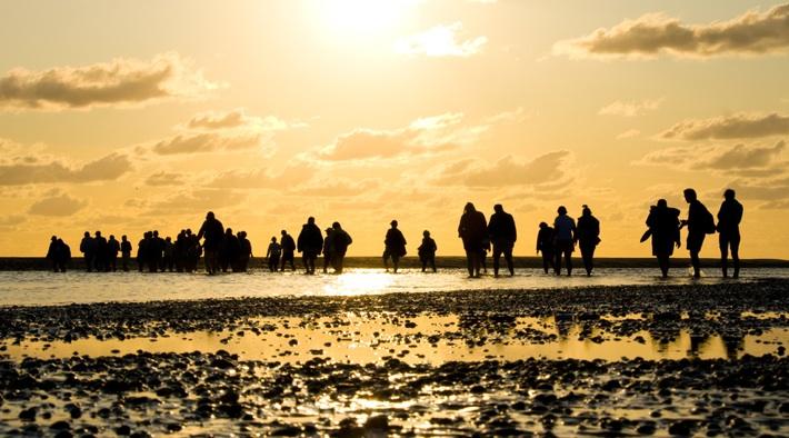 Eine Wattwanderung gehört zum Urlaub am Wattenmeer dazu.