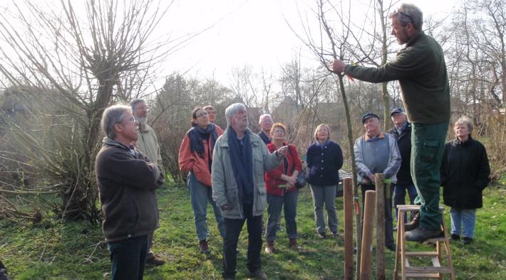 Garten- und Baumpflege