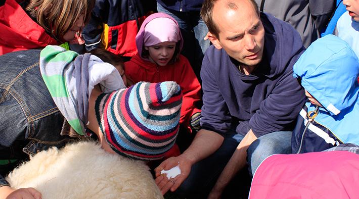 Hofladen Schafskäserei