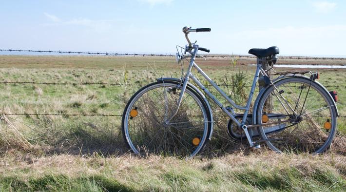 Radfahren über die Insel Sylt und die Natur der Insel erleben